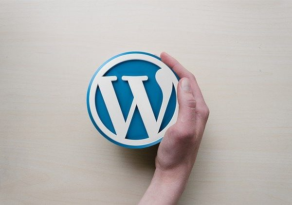 A hand holding a WordPress logo, representing must have wp plugins for 2020
